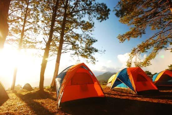 Terrain pour 2 tentes (Sapinière 2)